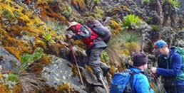 mountain hiking tours Uganda - Mountain Rwenzori National Park