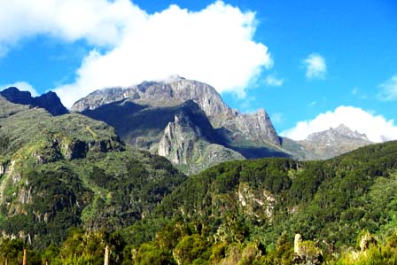 9 Days Rwenzori trekking adventure