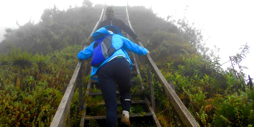 1 Day Mountain Sabinyo hike - virunga volcanoes
