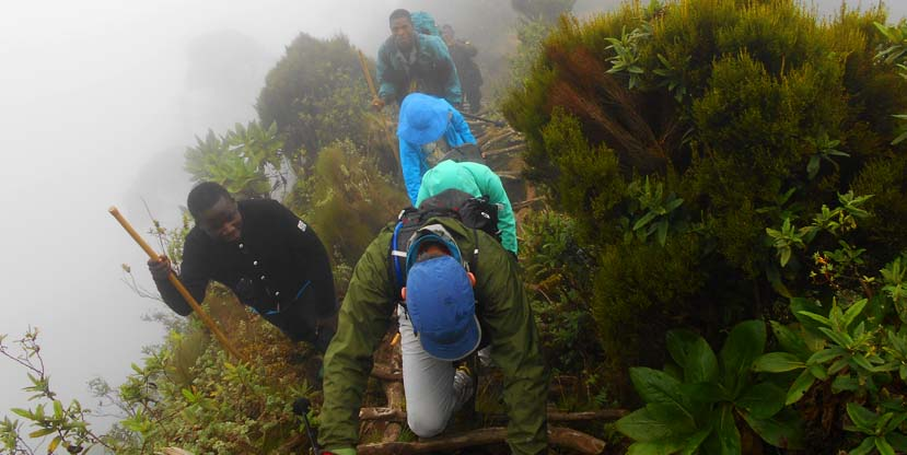 3 Days Mount Sabinyo hiking - virunga volcanoes