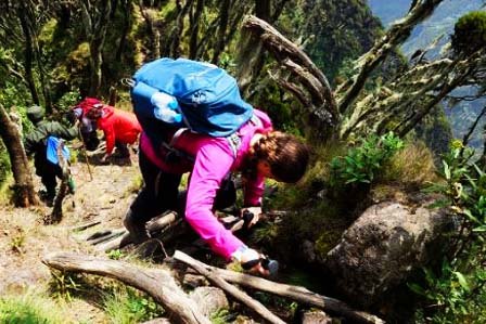 3 Days Sabinyo Hike