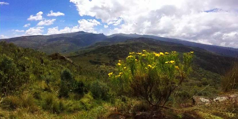 3 Days Mount Elgon Hiking - Mountain Elgon national park